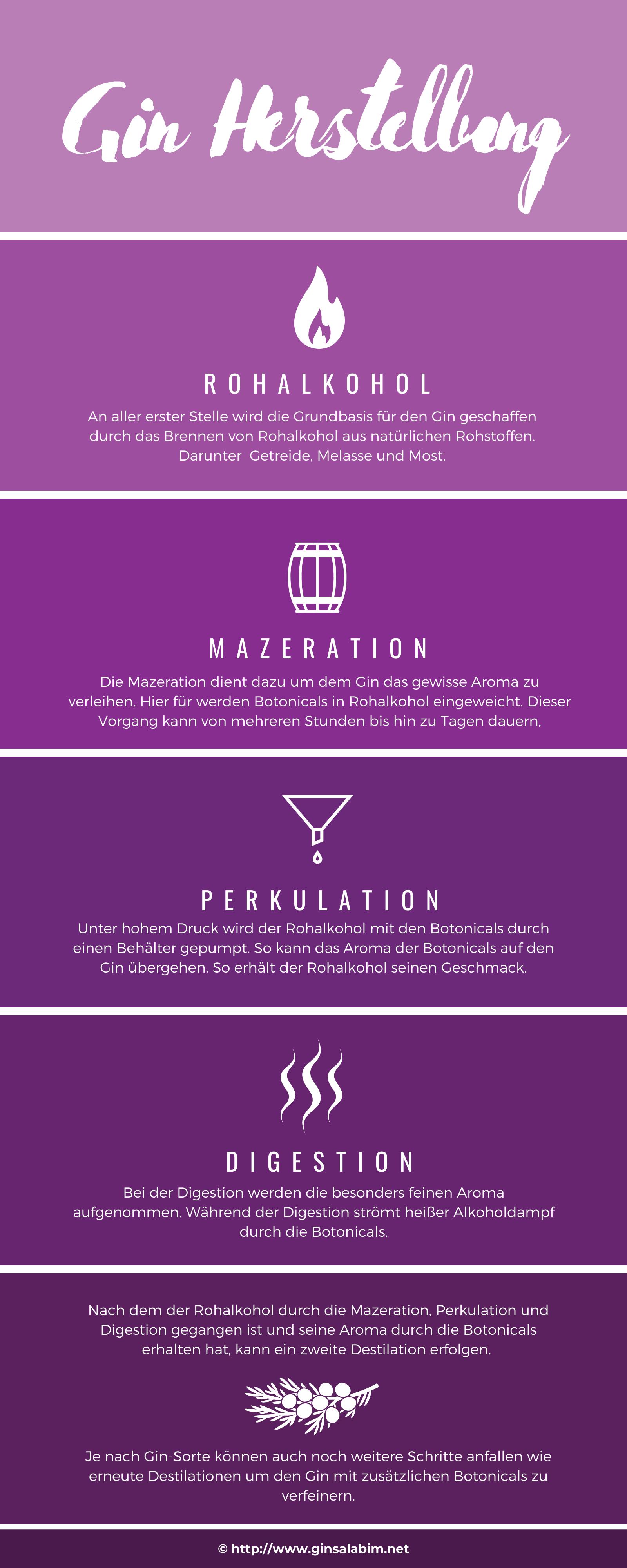 gin infografik herstellung
