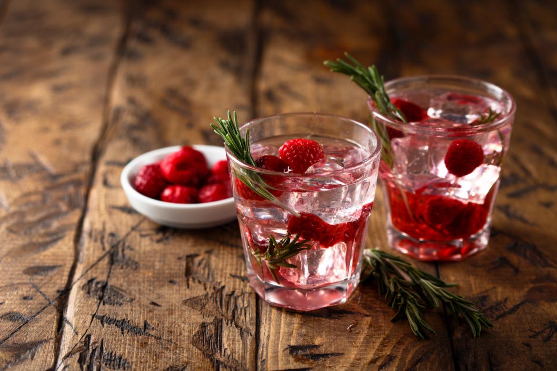 Gin Wild Berry